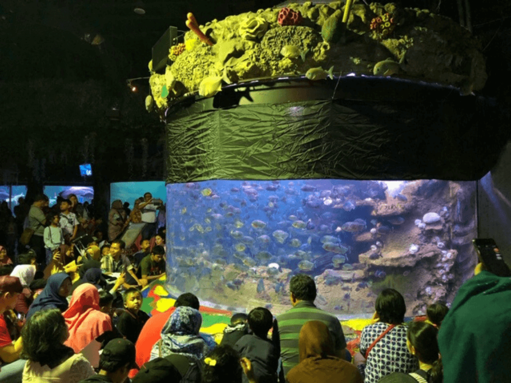 Piranha Feeding Show Seaworld Ancol