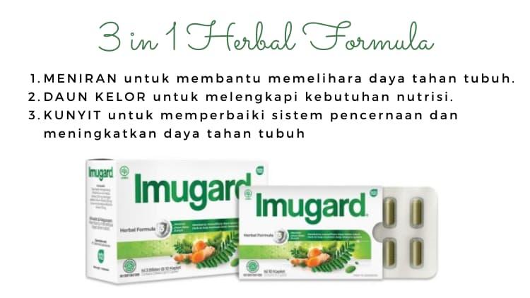 imunomodulator herbal